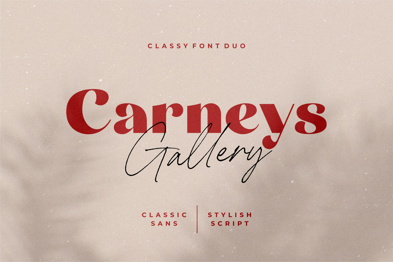 1-01 - Bhranta Ali-Carneys Gallery