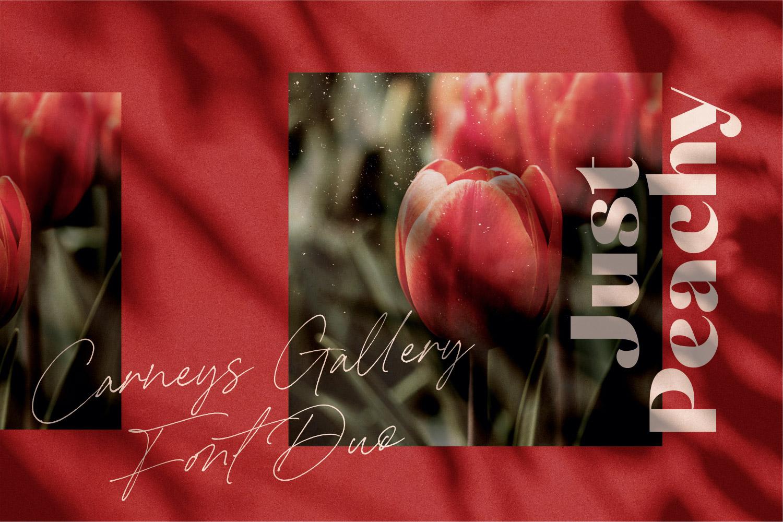 2-01 - Bhranta Ali-Carneys Gallery